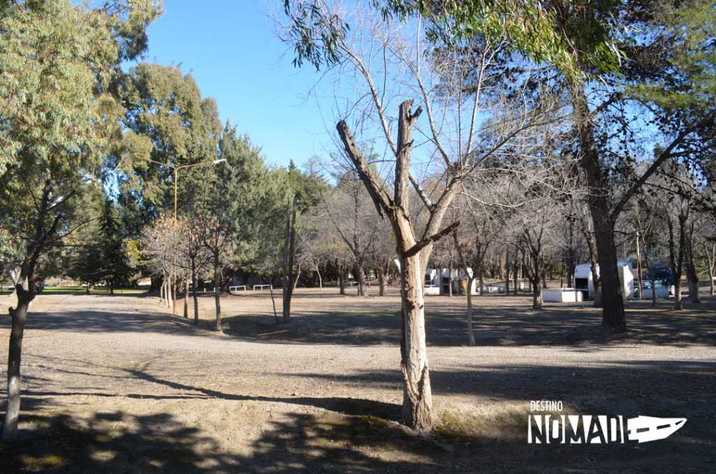 Pomona-camping1