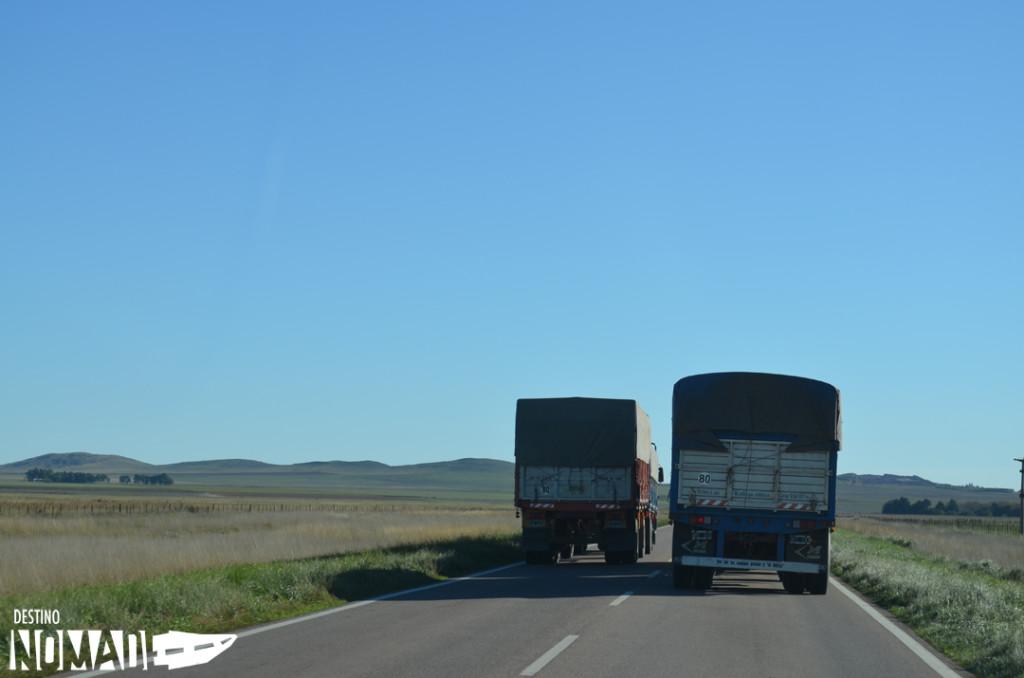 mesario-camiones