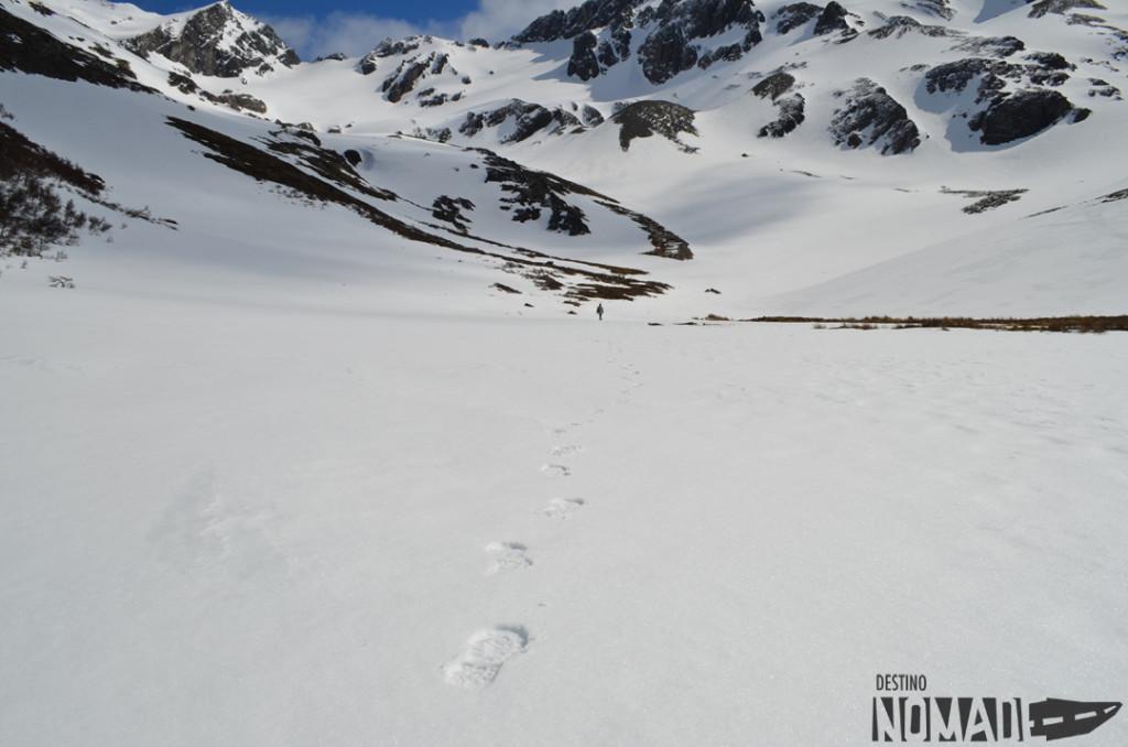 mesario glaciar
