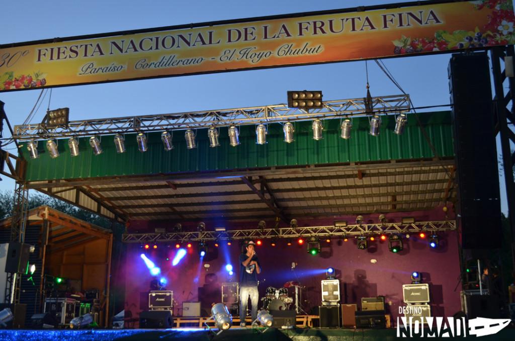 Fiesta de la fruta fina, El Hoyo, Comarca Andina