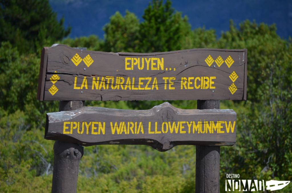 comarca-andina-naturaleza