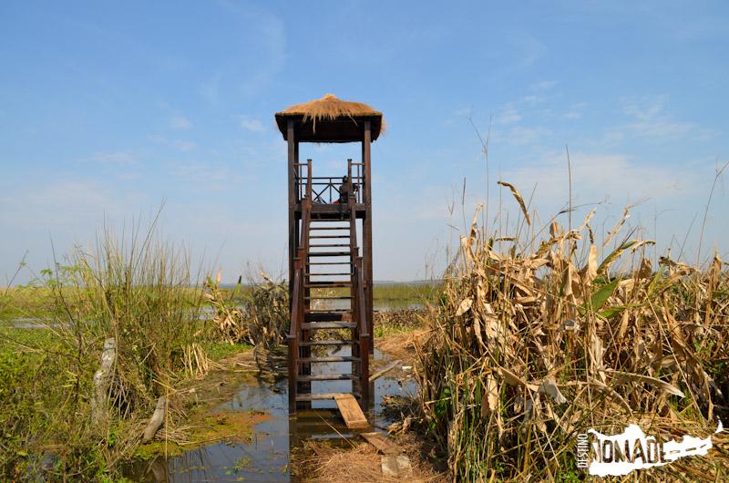 Miradores de los Esteros del Iberá