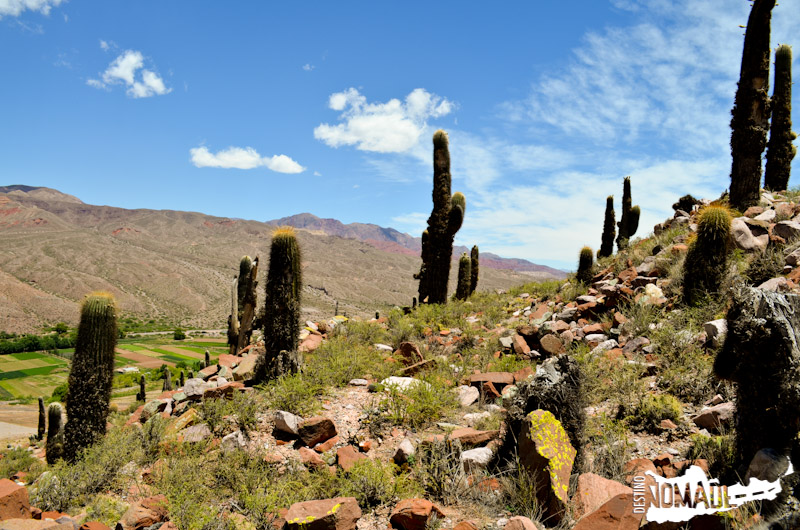 Pucará de Huacalera, Quebrada de Humahuaca