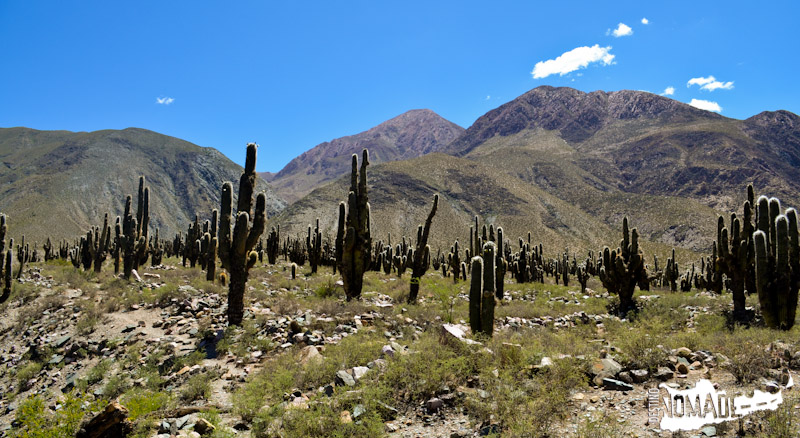 Antigal de Huacalera, Quebrada de Humahuaca
