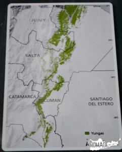 Mapa de las yungas en Argentina