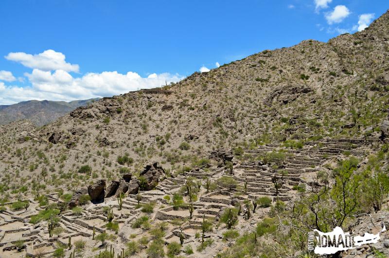 Ruinas de los Quilmes, Valles Calchaquíes